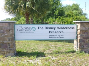 1 Disney Wilderness Preserve (20)