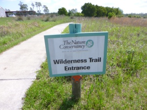 Disney Wilderness Preserve (59)
