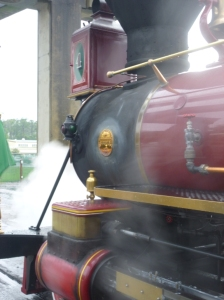 Magic Behind Our Steam Trains Tour (10)