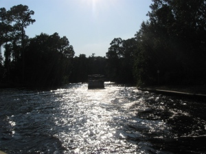 Sassagoula River (12)
